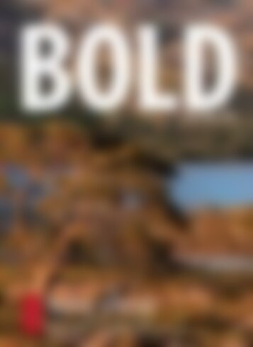 BOLD TRAVEL No.01