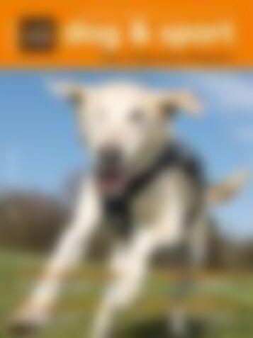 dog & sport Ausgabe 02/2015