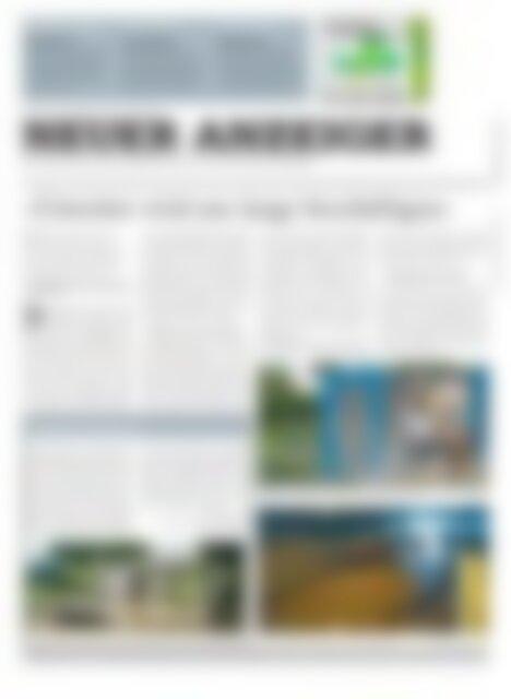 Neuer Anzeiger 19 Juni 2015
