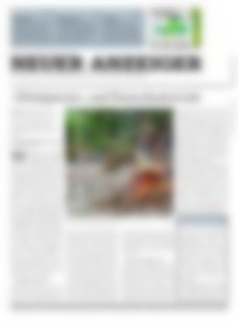 Neuer Anzeiger 17 Juli 2015
