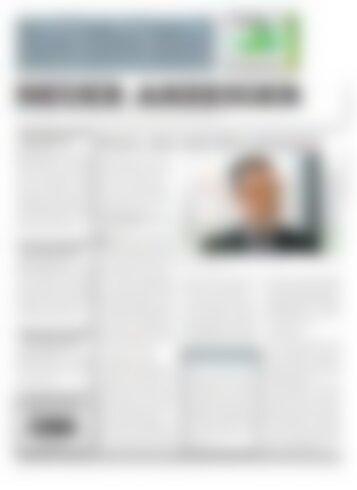 Neuer Anzeiger 11 Januar 2013
