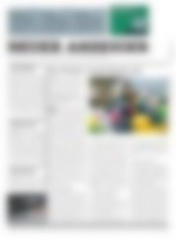 Neuer Anzeiger 15 Januar 2013