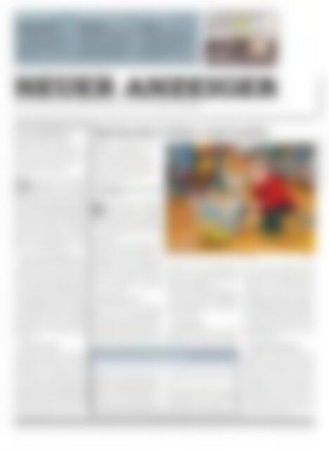 Neuer Anzeiger 5 Februar 2013