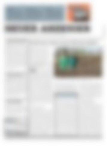 Neuer Anzeiger 23 April 2013