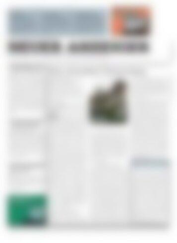 Neuer Anzeiger 17 Mai 2013