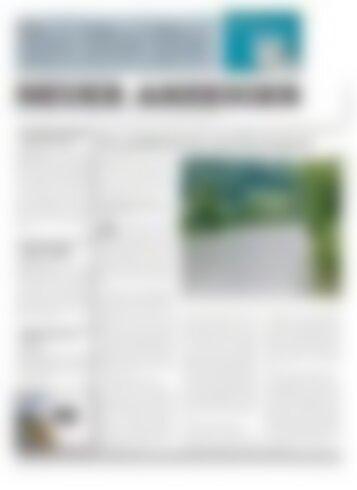 Neuer Anzeiger 28 Mai 2013
