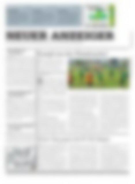 Neuer Anzeiger 13 August 2013