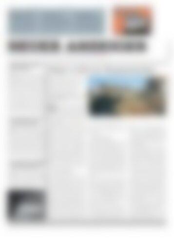 Neuer Anzeiger 29 November 2013