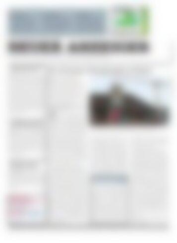 Neuer Anzeiger 21 November 2014
