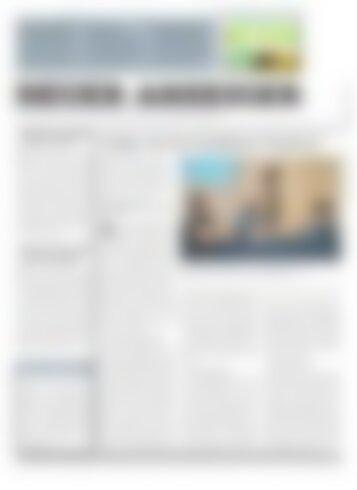 Neuer Anzeiger 19. Mai 2017