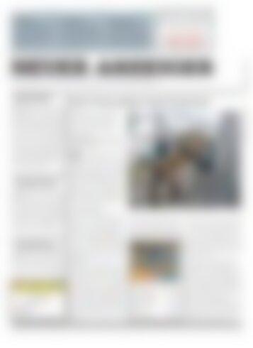 Neuer Anzeiger 24. Mai  2017