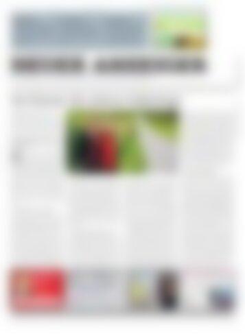 Neuer Anzeiger 15. September 2017
