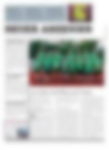 Neuer Anzeiger 6. Oktober 2017