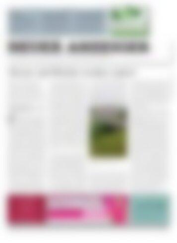 Neuer Anzeiger 10. November 2017