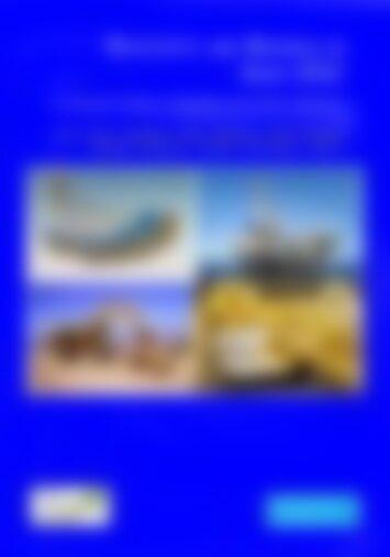 Wirtschaftsreport: Rohstoffe und Bergbau in Asien 2012 Wirtschaftsreport: Rohstoffe und Bergbau in Asien 2012 - Strategische Metalle, Mineralien und weitere Rohstoffe (Vorschau)