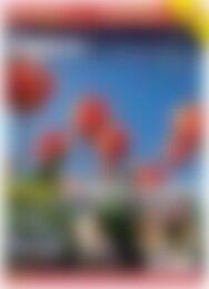 Digitale Fotografie - Update Belichtung & Outdoor (Vorschau)