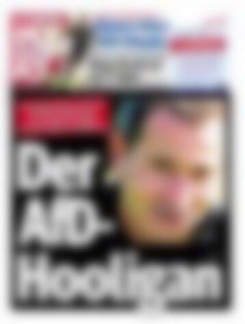 Hamburger Morgenpost Ausgabe vom 04.11.2014 (Vorschau)