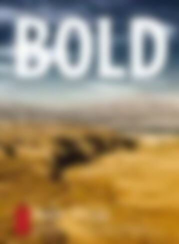 BOLD TRAVEL No.05
