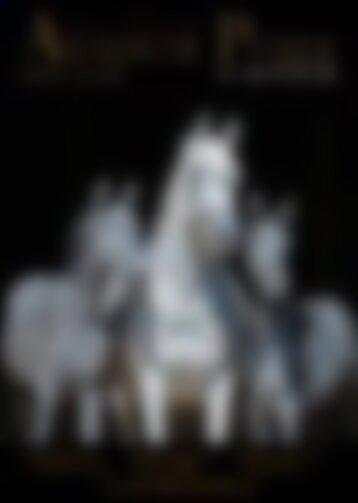 Arabische Pferde IN THE FOCUS 1/2018 (Vol. 13) - Leseprobe