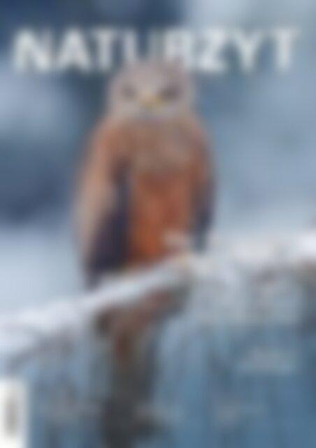 NATURZYT – Das Schweizer Naturmagazin – Ausgabe Dezember 2018