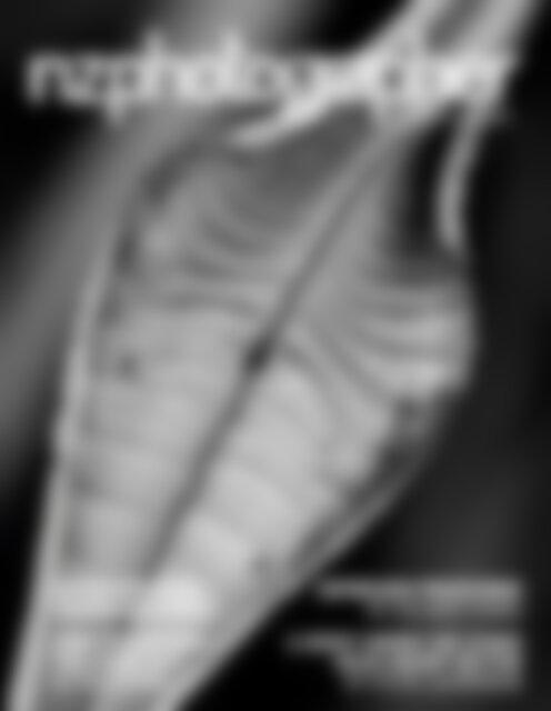 NZPhotographer Issue 32, June 2020